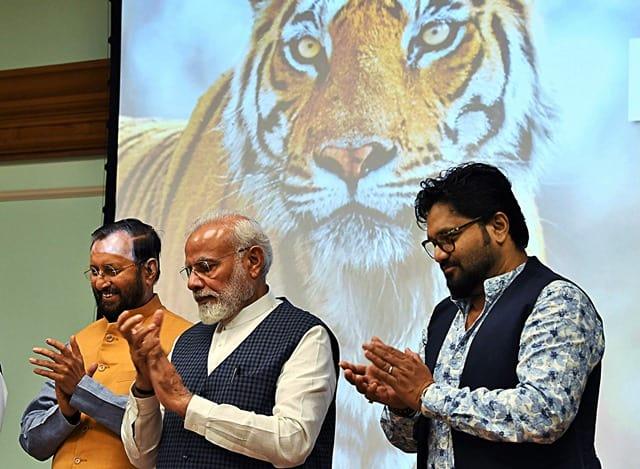 Indian Tiger Census 2018